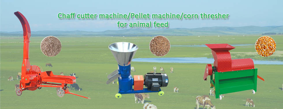 China best Agriculture Planting Machine on sales